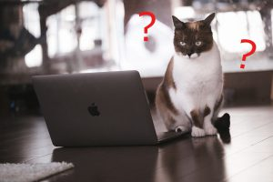 ブログに悩む
